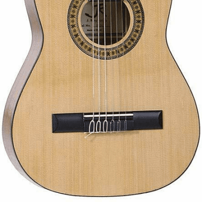 J Reynolds 34-Inch Nylon String Student Guitar with Bag - JR12N for sale