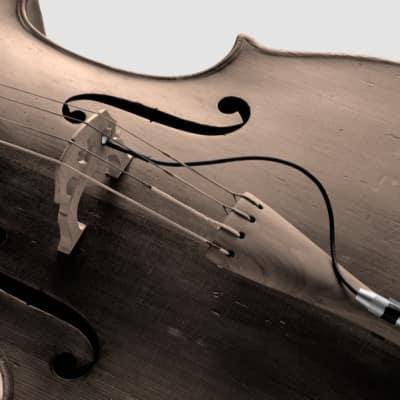 Schertler STAT-C Electrostatic Transducer for Cello (Pickup Only) for sale