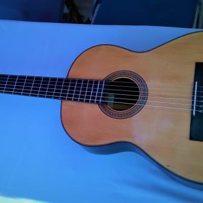 Guitare Favino  Classique-Nylon 70's for sale