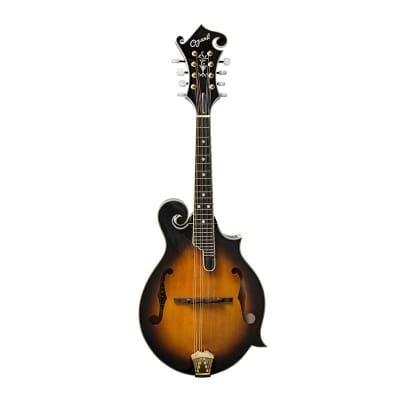 Ozark Mandolin F Model Deluxe Pro for sale