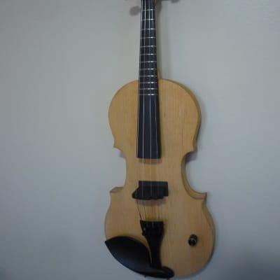 Fretted electric violin.
