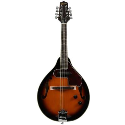 Ibanez M510E-BS Akustische Mandoline mit Tonabnehmer, Brown Sunburst for sale