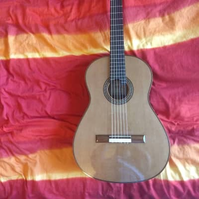 Kenneth Hill Performance Model 2015 Schellack, cedar, Indian rosewood, for sale