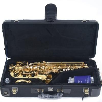 Yanagisawa AW010 Alto Saxophone Lacquer