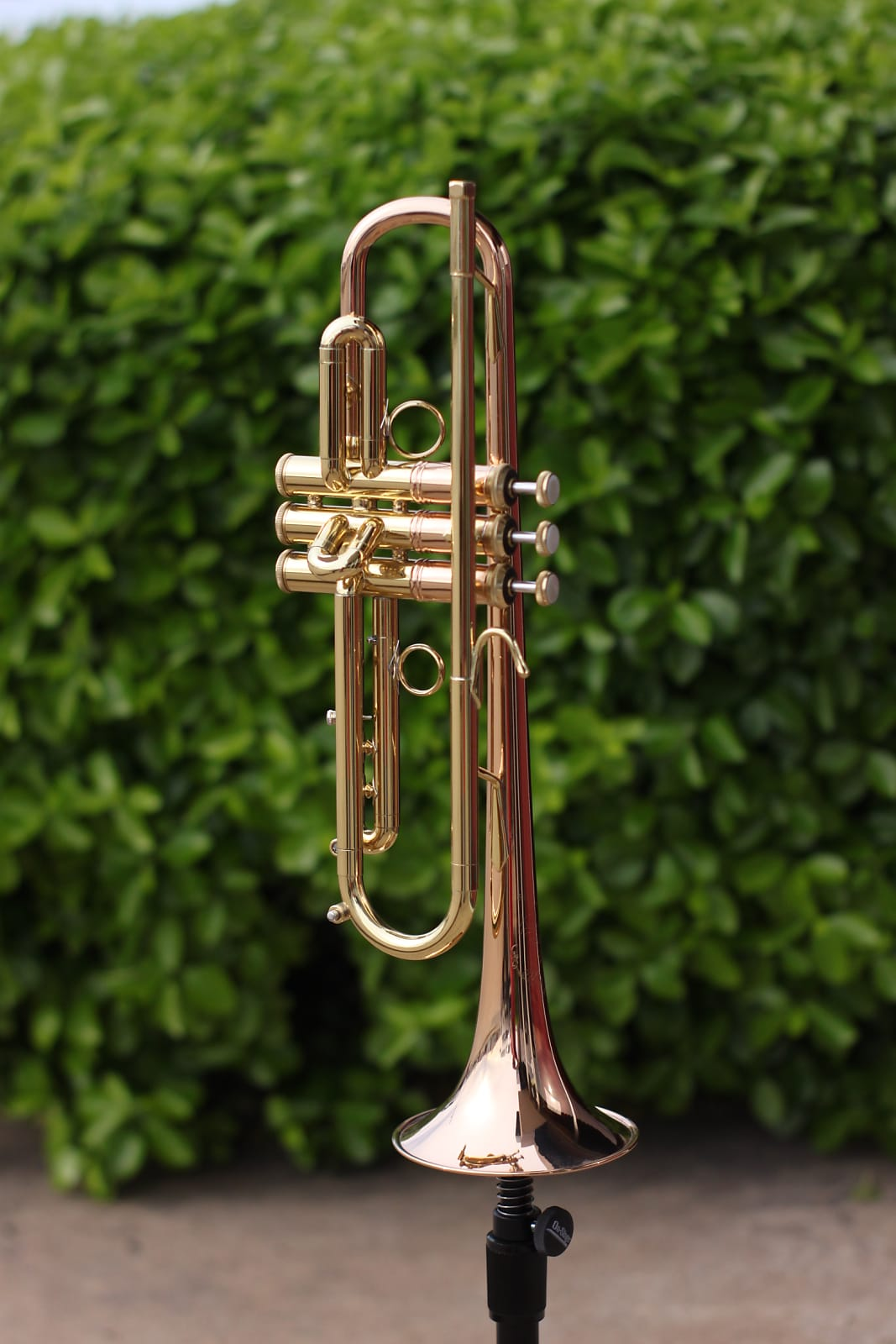 Bach LT1901B Stradivarius Commercial Model Bb Trumpet - Open Box Discount - Free Shipping!
