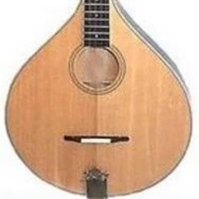 GOLD TONE Banjola Model 5-string Mandola Banjo with Solid Spruce Top