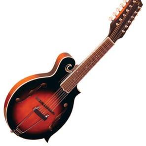 Gold Tone F-12 12-String Manditar