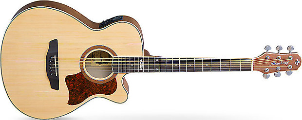 strinberg sa 20 natural acoustic electric guitar w built in reverb. Black Bedroom Furniture Sets. Home Design Ideas