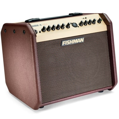 Fishman PRO-LBT-500 Loudbox Mini 2-Channel 60-Watt  Acoustic Guitar Amp with Bluetooth