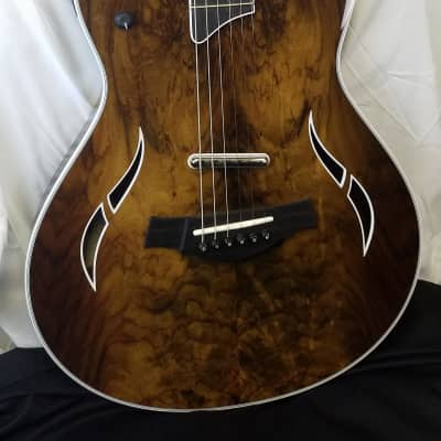 Taylor T5z Custom Rosewood Top, Sapele Body, Thinline Acoustic-electric Guitar for sale