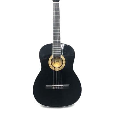 Esteban Guitar - Acoustic G-200 for sale