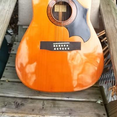 Hernandis  12 string for sale