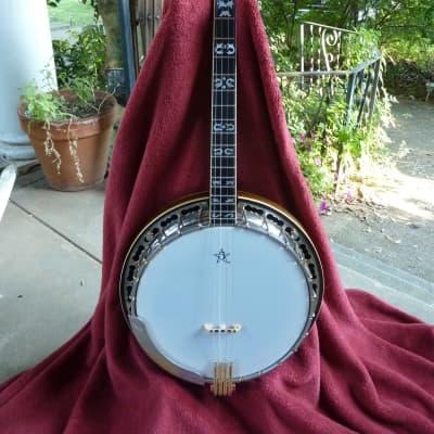 BALDWIN ODE Series D Tenor Banjo 1977-Reduced! for sale