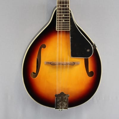 Appalachian APM-1 Mandolin Pickin' Pack for sale