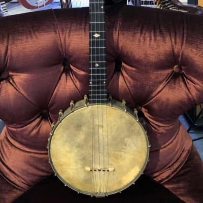 S. S. Stewart American Princess 1890-1894 4-String Banjo (Pre-Owned) (Glen Quan Collection) for sale
