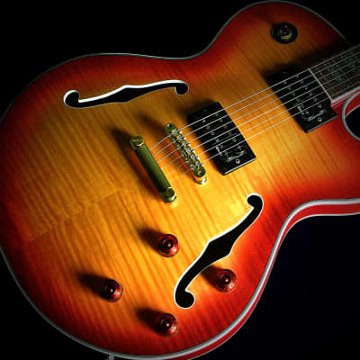 Raines LA6 or LA7 2019 6 or 7 String Electric Jazz Guitar Semi Hollowbody  TRADES! for sale