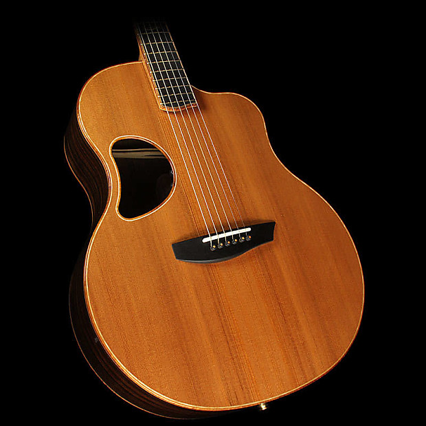 Manage Macassar ebony guitar speaking, would