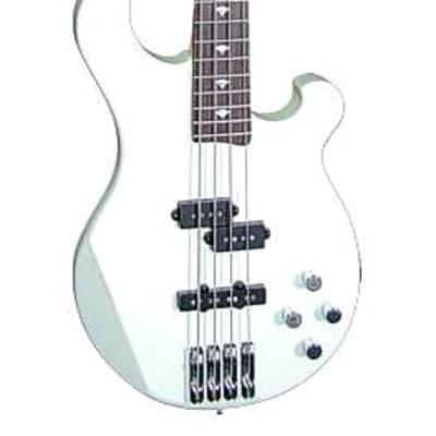 Tregan SHB STD AW BSW PJ Shaman Bass Standard Contoured Basswood Body 4-String Bass Guitar for sale
