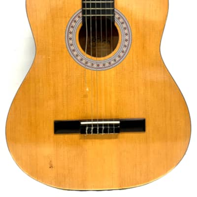 Burswood Guitar - Acoustic Esteban Spanish/Classical Guitar for sale