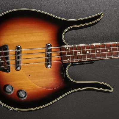 Dynelectron Longhorn Bass Late 1960's for sale