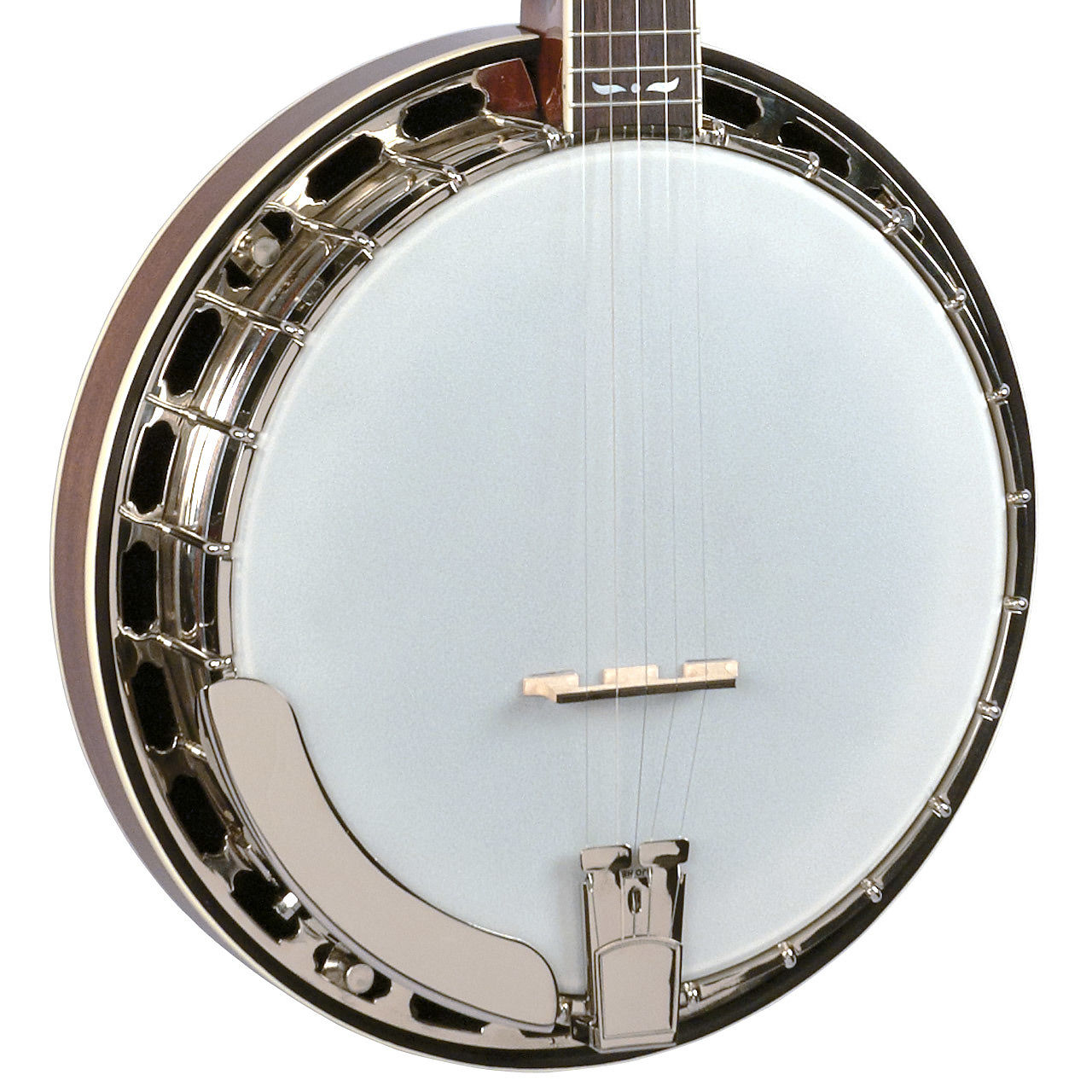 Recording King RK-R36-BR King Madison Resonator Banjo with Tone Ring,  Mahogany