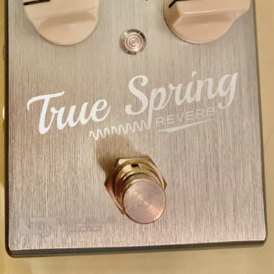 Source Audio True Spring Reverb with SA167 Tap Tempo 2018