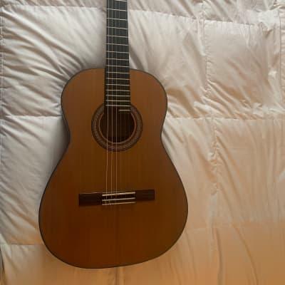 Miguel Acevedo Classical Guitar Novo ClassicGran Maestro 2015 Indian rosewood, Cedar for sale
