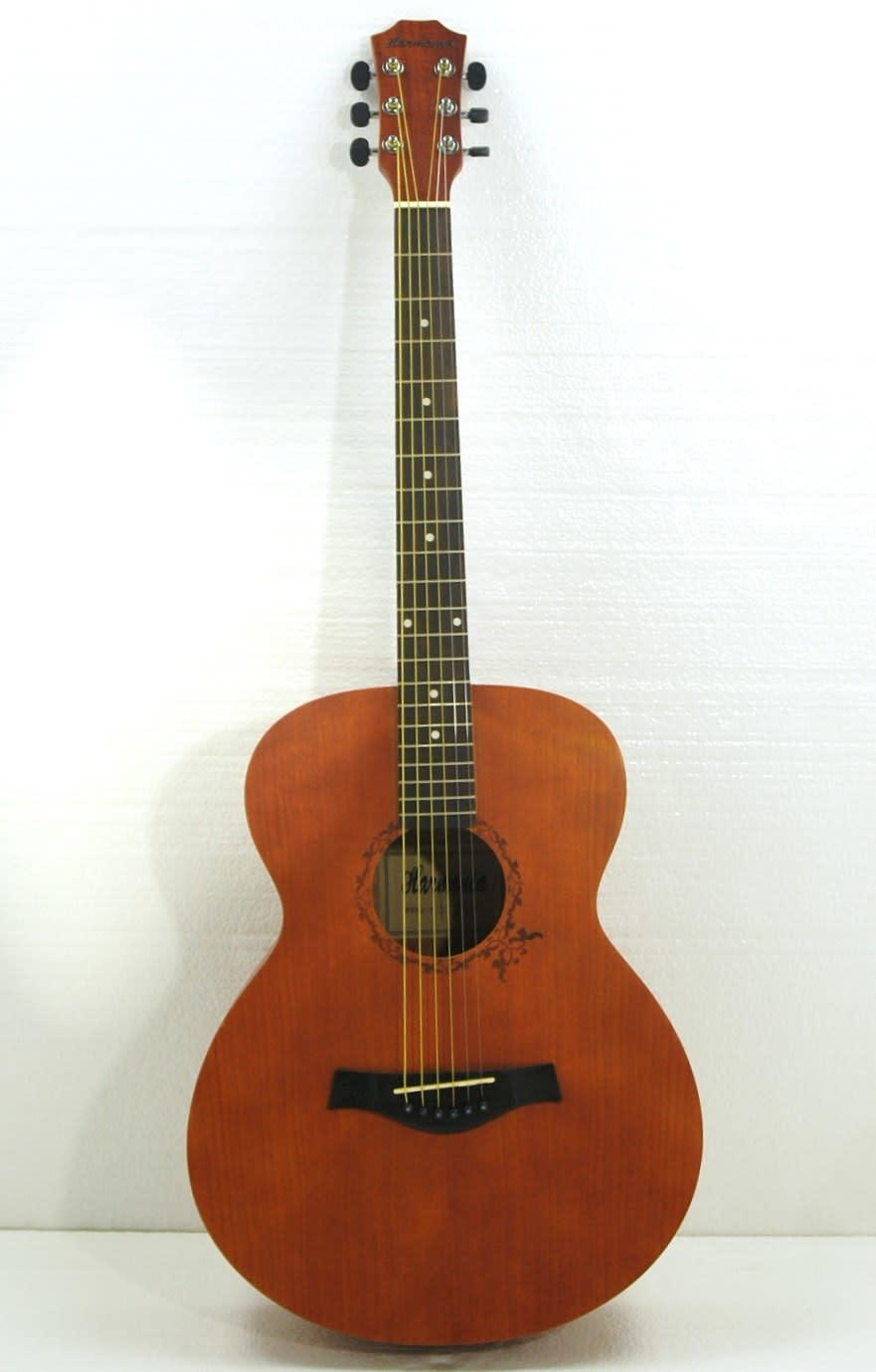 Steel String Acoustic Guitar Images Pictures Becuo