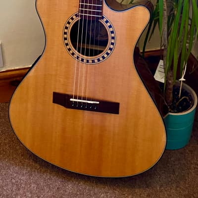 Andrew White EOS 112 Natural electro-acoustic guitar with gig bag for sale