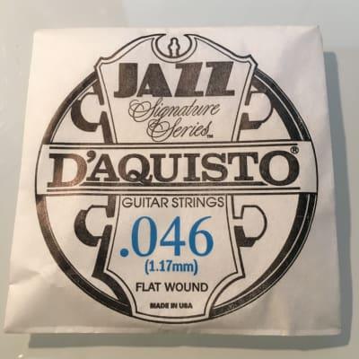 "D'Aquisto RARE Jazz Signature Series String .046"" Flatwound"