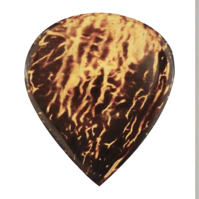 Coconut Palm Shell Guitar Pick - Handmade Acoustic Specialty Wood Exotic Plectrum - 12 Pack New