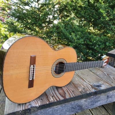 Amalio Burguet 2M Cedar, Meistergitarre incl. Koffer for sale