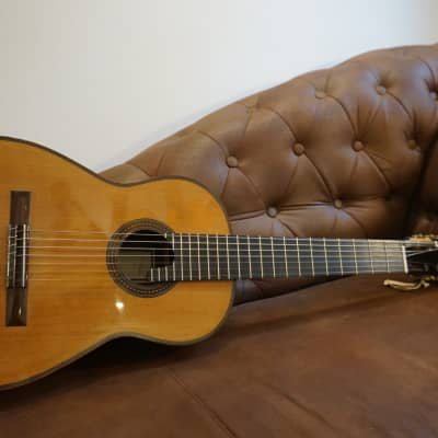 Thomas Fredholm 7 String Luthier Guitar for sale