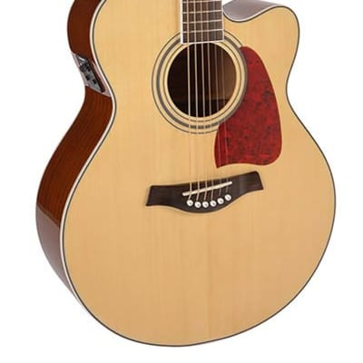 Richwood Artist Series RJ-17-CE acoustic guitar for sale