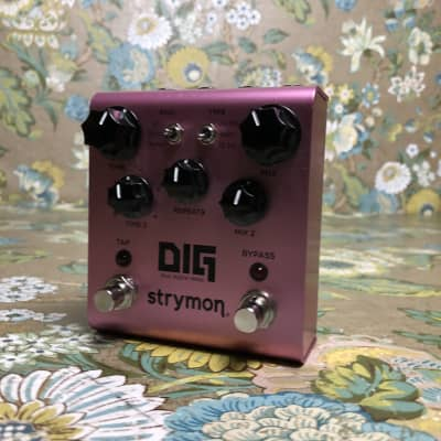 Strymon Dig Dual Digital Delay