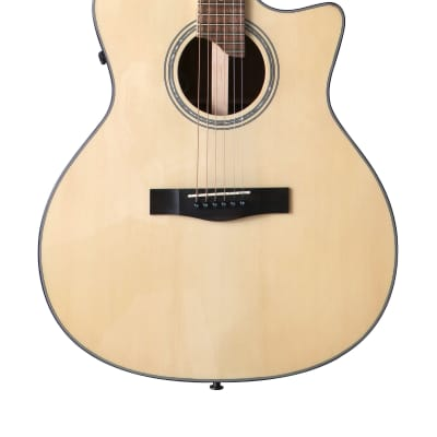 Riversong P 550CE-A 2019 Auditorium/Cutaway/Fishman for sale