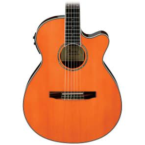 Ibanez AEG10NIITNG AE Series Acoustic-Electric Guitar Tangerine