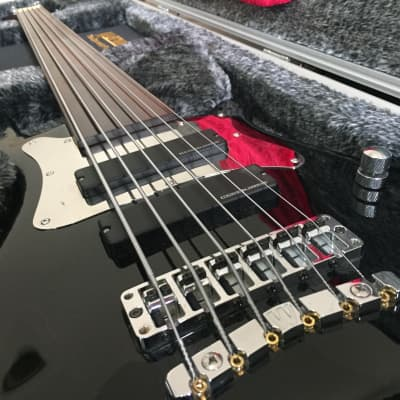 Warwick Bass Masterbuilt Steve Bailey Signature, 6-String Fretless (Made in Germany) for sale