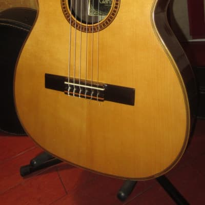 Vintage Circa 1969 Giannini AWN-21 Classical Nylon String Acoustic Guitar for sale