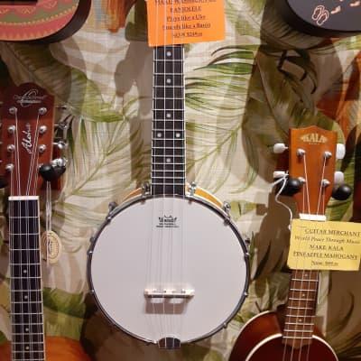 Oscar Schmidt Concert Banjolele OUB1 for sale