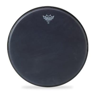 Remo Snare Drum/Tom Heads : Black X, 14 Diameter, Black Dot Bottom