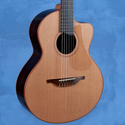 S-25J Nylon Crossover Guitar w/ LR Baggs pick-up for sale