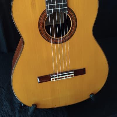 1971 Eduardo Ferrer Rosewood and Spruce Classical Guitar