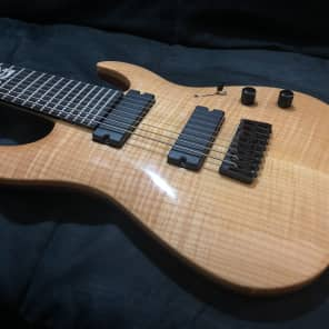 Legator Ninja 300-PRO 8-String w/ Sperzel Locking Tuners and Free Strings!