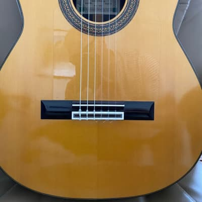 Fernandez Flamenco  2008 Spruce / Indian Rosewood for sale
