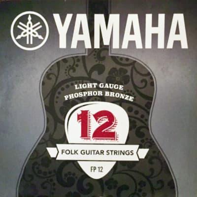 Yamaha Phosphor Bronze Acoustic Guitar Strings - 12-53 (FP12)