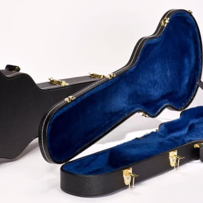 Ibanez AR100C Artist Series Form Fitted Hardshell Case