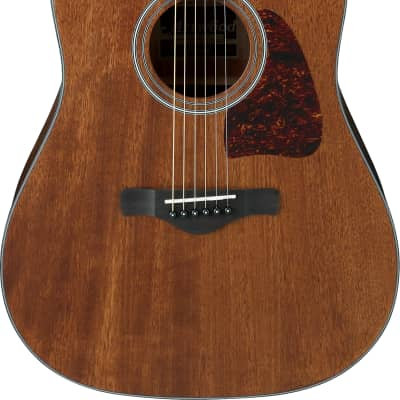 Ibanez AW54OPN Artwood Series Acoustic Guitar