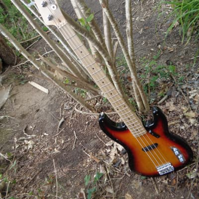Sting-bass by PCsGC/HB for sale