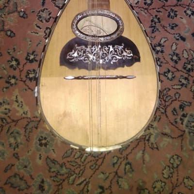 Vinaccia Mandolin est 1896 for sale